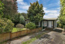 108 Coronation Road, Hillcrest, North Shore City, Auckland, 0627, New Zealand